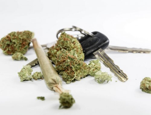 The Science Behind Marijuana DUI Testing
